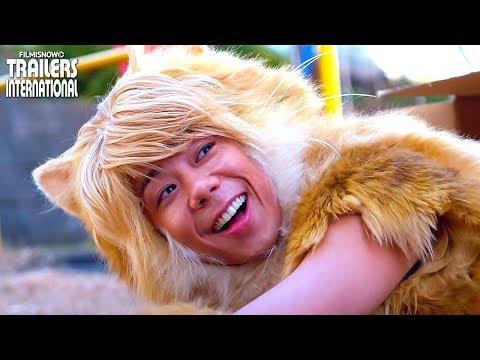 映画『トラさん~僕が猫になったワケ~』予告編2