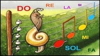 Versini - Un beau tournesol - Les notes de musique - YourKidTv