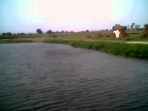 Mera Pind Mani Mehra