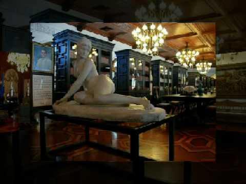 The malacañang palace