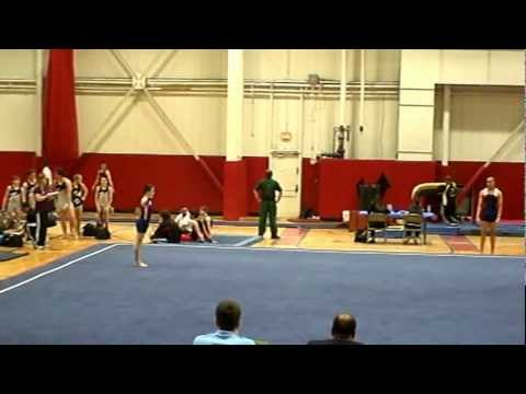 level 5 state gymnastics meet va train