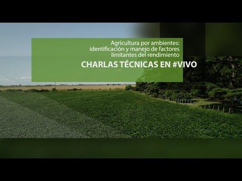 Charla técnica - Agricultura por ambientes: identificación y manejo de factores limitantes del rendimiento