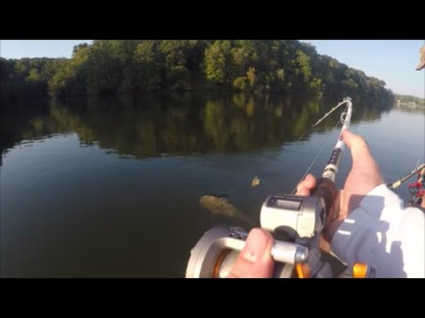LINE-COUNTER REELS & Precision Fishing Techniques - Okuma Fishing USA