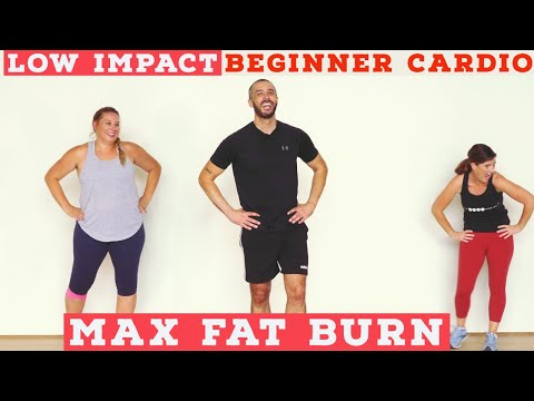 Fat burning Beginner LOW IMPACT home cardio workout – all standing!