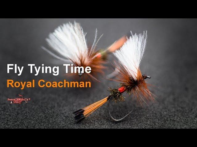 Fly Tying Time - Royal Coachman