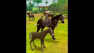 /Разведение лошадей в АО+кач лошадей!!))/