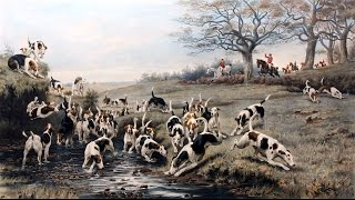 Охота с Русскими пегими гончими в Европе