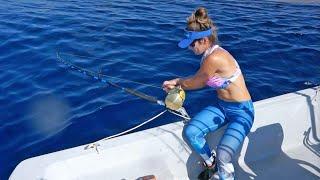 Offshore Fishing | Operation Swordfish 1