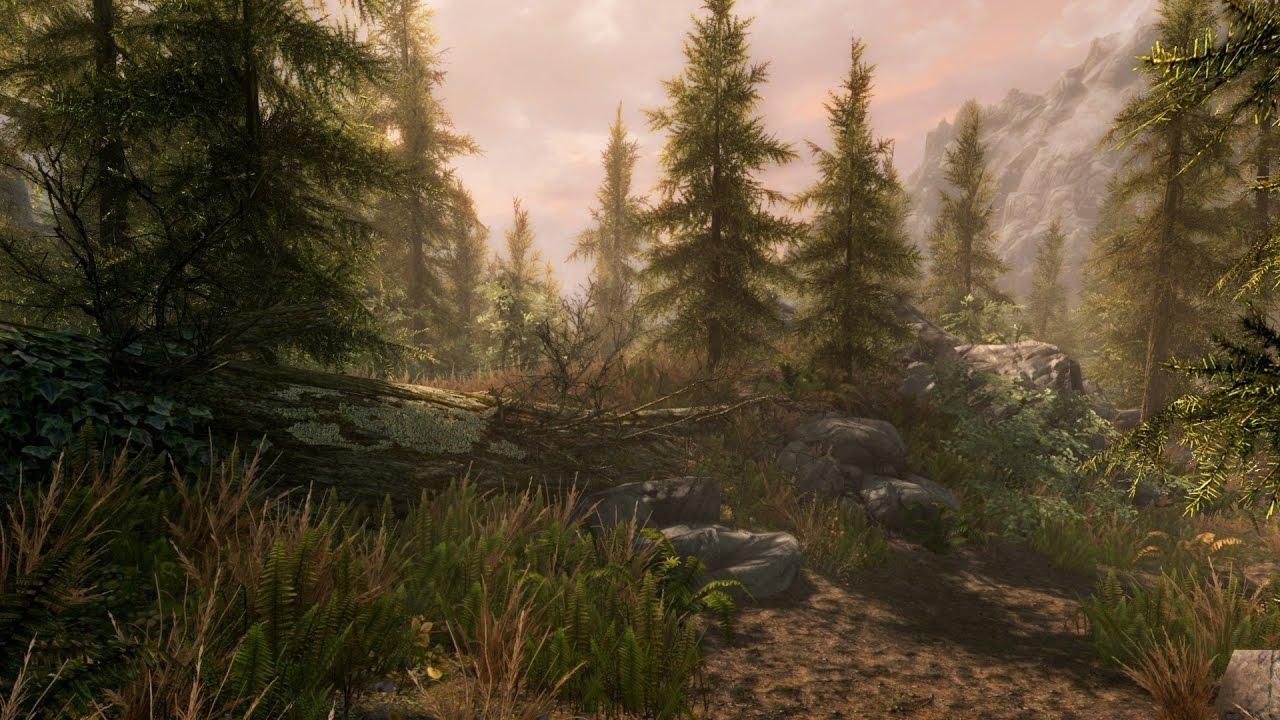The Elder Scrolls V: Skyrim Special Edition Прохождение На Русском — НОВАЯ ГРАФИКА!