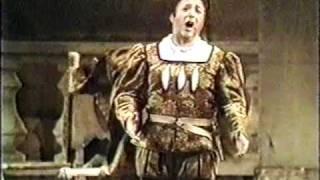 """G. Verdi     RIGOLETTO   """"Ella mi fu rapita!...Parmi veder le lagrime...Possente amor mi chiama"""""""