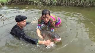 Primitive skills | catch a lots of fish_Catch Fish At Stream_Catch big fish weighing 10 pounds