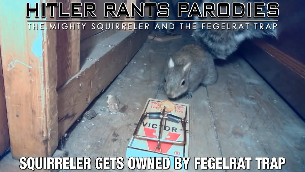 Squirreler gets owned by Fegelrat Trap