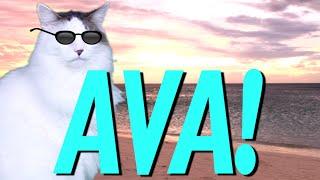 HAPPY BIRTHDAY AVA! - EPIC CAT Happy Birthday Song