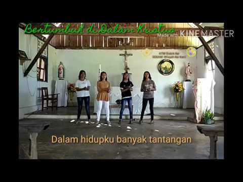 Lagu Bina Iman Anak Katolik - Bertumbuh di Dalam Kristus
