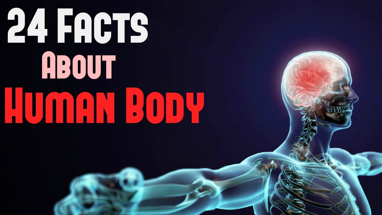 Amazing and Interesting Facts About Human Body - YouTube