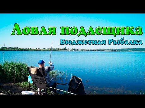 Фидер 2016/Ловля подлещика, бюджетная рыбалка