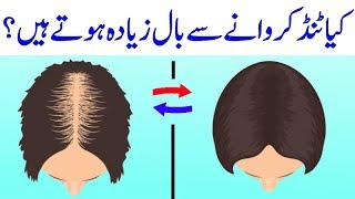 Does Shaving Head Make Hair Grow Thicker - Urdu Hindi