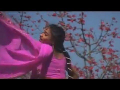 Chhattisgarhi Album Promo - Turi Ke Urage Achra - Neelkamal Vasihnav