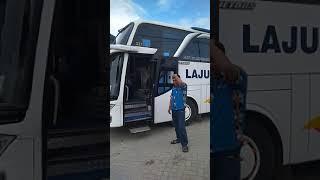 Gambar cover Naik bus laju prima agen mayahan lp 227