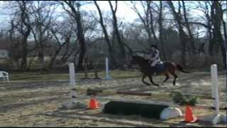 for sale: Fancy Pants [jumping]