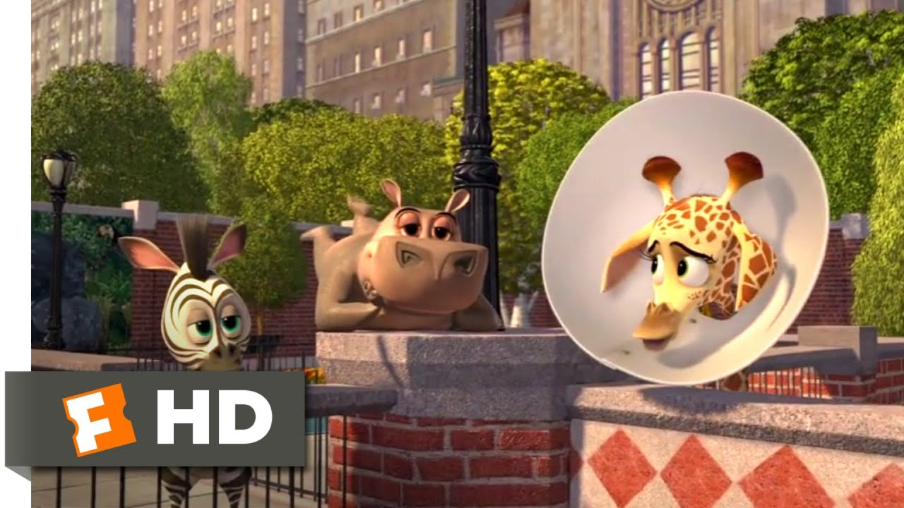 Download Madagascar: Escape 2 Africa (2008) - Baby Alex Goes to New York Scene (1/10) | Movieclips