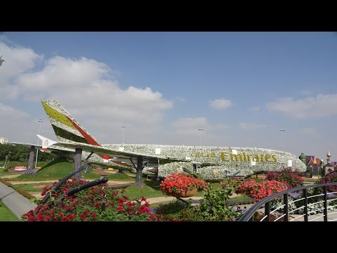 Dubai Miracle Garden 2017 Visit/Guinness World Records/Emirates Airline/A380/Top Attraction