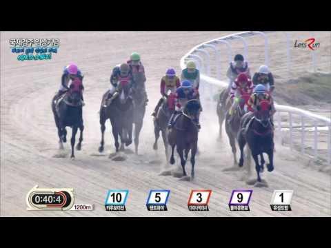 20160410 렛츠런파크 부산경남 6경주 1800m (국제경주 입상 기념)