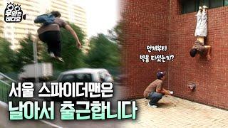 서울에 스파이더맨이 나타났다!!