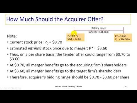 APV Method in Merger Valuation