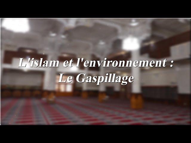 L'islam et l'environnement : Le Gaspillage