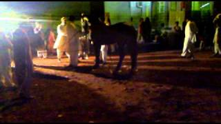 Horse Dhamal (Dance on the Beat of Dhool)
