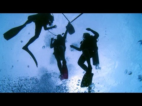 Scuba Diving with Sharks in French Polynesia