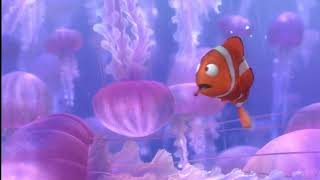 Finding Nemo: Jellyfish Sting thumbnail