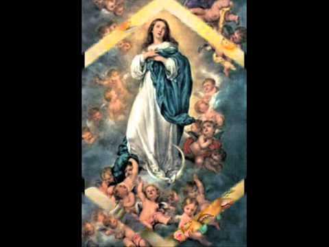 Música Imaculada Conceição