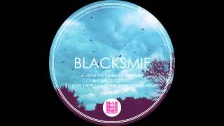 Blacksmif - How The Fly Saved The River (Lorca Remix) BBB006