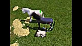 Sims 3 ~ Accouchement d'un bébé licorne