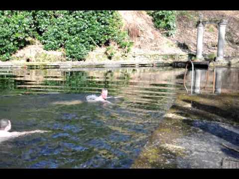 disused swimming pool avi youtube