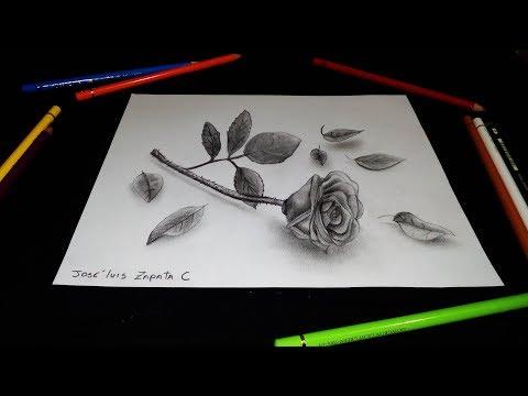 Dibujando una rosa 3D   Drawing a rose 3D   HD