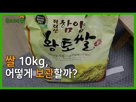 쌀 10kg, 어떻게 보관할까? | 쌀 10kg 보관하기 | 살림 도전기