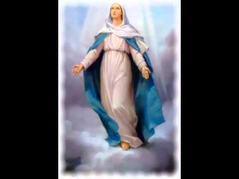 La Asuncion De Maria Al Cielo 2