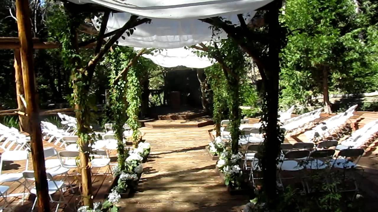 Pine Rose Tour Forest Wedding Venue Tropical Honeymoon Rose Wedding