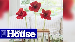 How To Build A Bottle-vase Holder - This Old House
