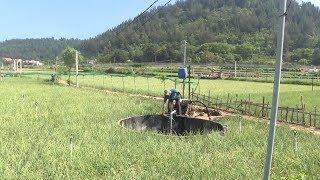 Tin tức 24h: Nông dân Lý Sơn thiếu nước sản xuất