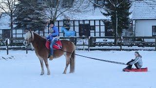 Hey leute,ich wollte schon immer mal mit pferd schlitten fahren und durfte mir dazu sternchen von meiner freundin kathi ausleihen, danke nochmal :)da occasio...