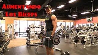 Rutina para aumentar los bíceps/Biceps Muscle Grow/Trainer Marcelo