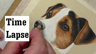 Jack Russell Time Lapse | Pastel Pencils