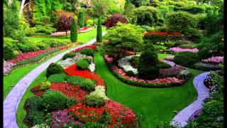 El Jardinero y el Forastero - Cuento Espiritual