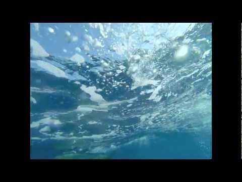 2013 Dorado @ Panama Sport fishing Lodge - Underwater