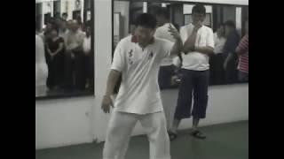 2003俞思光太极分享会