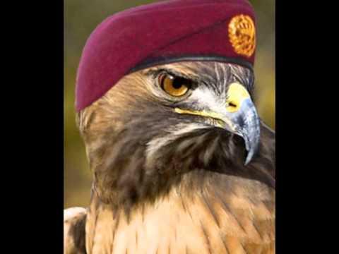 Ya Nsour Lebanese Army Rap Song 2013 By Charbel يا نسور الجيش اللبناني العظيم